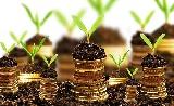 Fejlesztési forrásokkal és adókedvezménnyel segítik Pest megye vállalkozóit