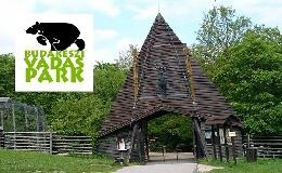 Óvodai programot indít a Budakeszi Vadaspark